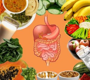 How-to-Improve-Your-Digestive-System